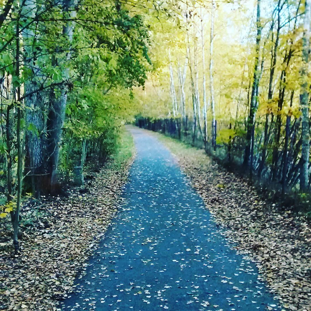 Fotka od Verunky. Podzimni lebedeni v laznich