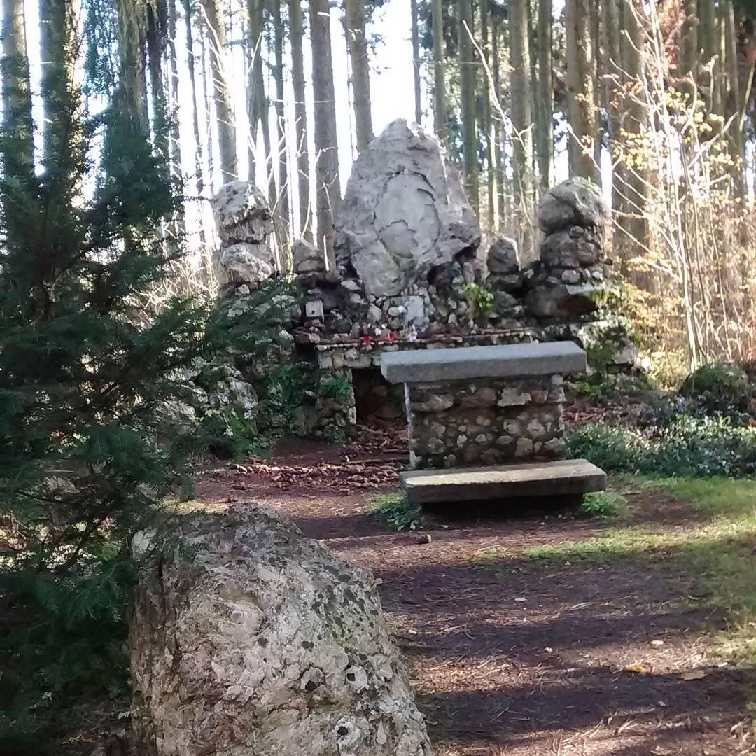 Fotka od Verunky. Lesní památník ve Frantovkách..nedêlní idylka