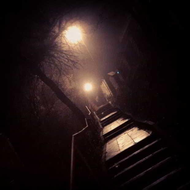 Fotka od Ferdika. Nightrun fun #15k = #easyrun. #lysolaje, #baba, #sarka, #stromovka