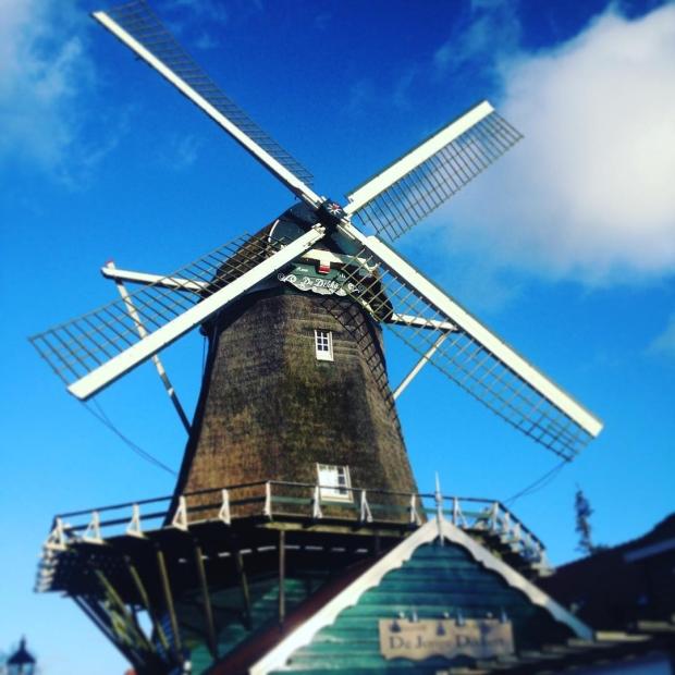 Fotka od Verunky. Prvni vetrny mlyn v #amstelveen v #holandsko s @ferdinandvalent Nakonec to byl krasny slunecny zaver prvniho dne:)