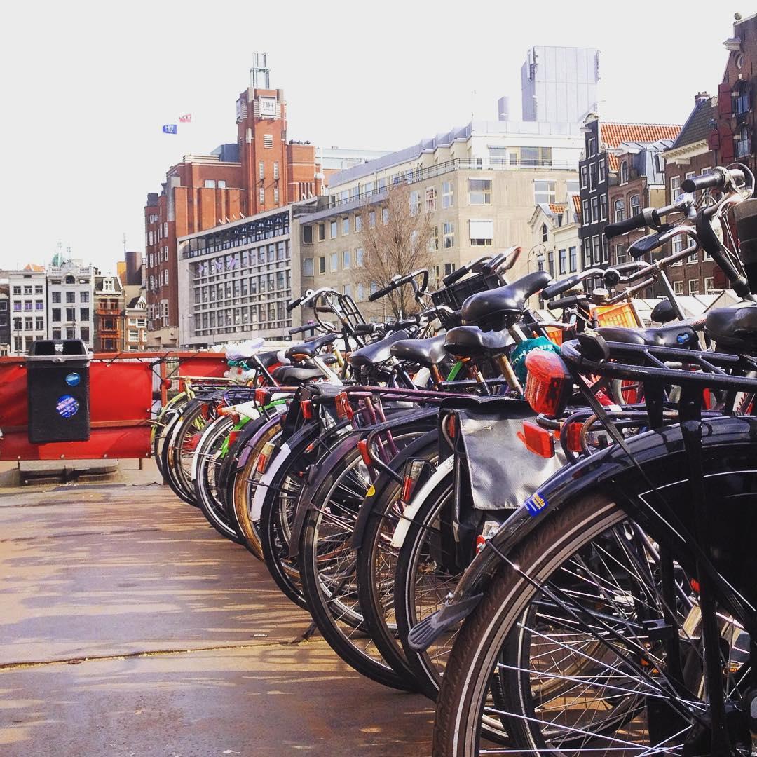 Fotka od Verunky. Ktery kolo si vyberem, @ferdinandvalent ? Cykloparkoviste na pontonu uprostred Amsterdamu...🚲😏