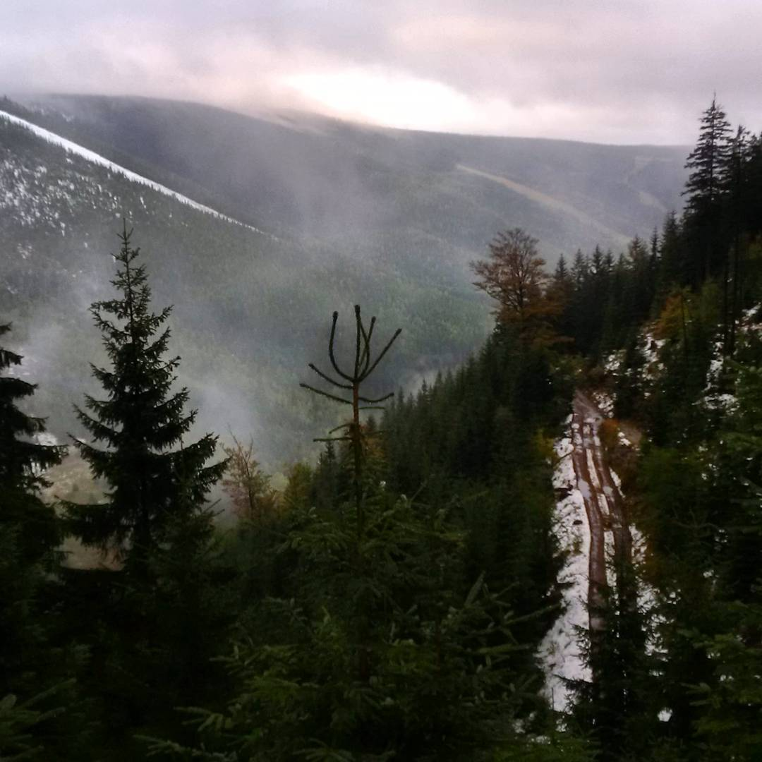 Fotka od Ferdika. 283/366: Good morning from #Krakonos #peak in #Kozihrbety area. #Raining down in #Spindl, heavy #snowing around 1200m, fog and quiet on the peak. And couple of sun rays on the way back down. #run, #morningrun, #trail, #mountains, #forrest, #nature, #wakeup, #bestoftheday, #topoftheday, #photooftheday