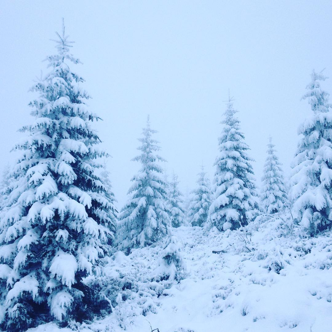 Fotka od Verunky. Skvelej zacatek relax vikendu-vyslap na #medvedin v #krkonose ❄️⛄️