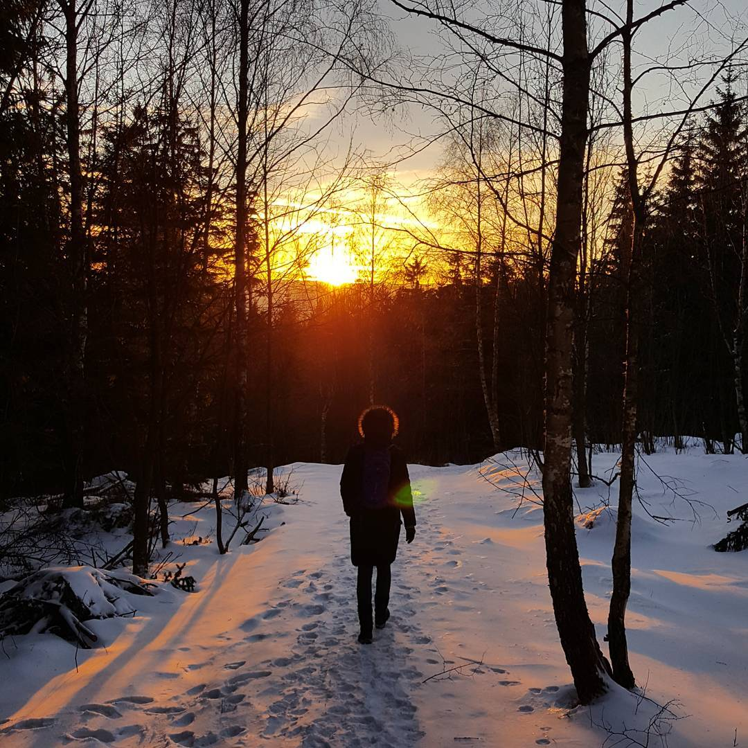 Fotka od Ferdika. 363/366: Follow the #Sun. #hike, #trail, #krkonose, #mountains, #nature, #jilemnice, #benecko, #bestoftheday, #photooftheday, #picofday
