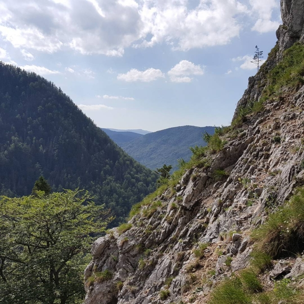 Fotka od Ferdika. Even in #slovakparadise you can find #hiddenpaths. This #picture Is from nice #ascent to Holý kamen and #nearby #peaks. #hike, #run, #trailrun, #aroundslovakparadise, #nature, #fellrunning